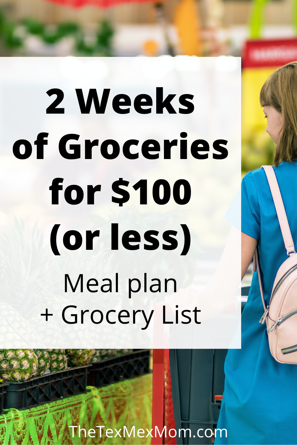 2 weeks of groceries for $100 or less