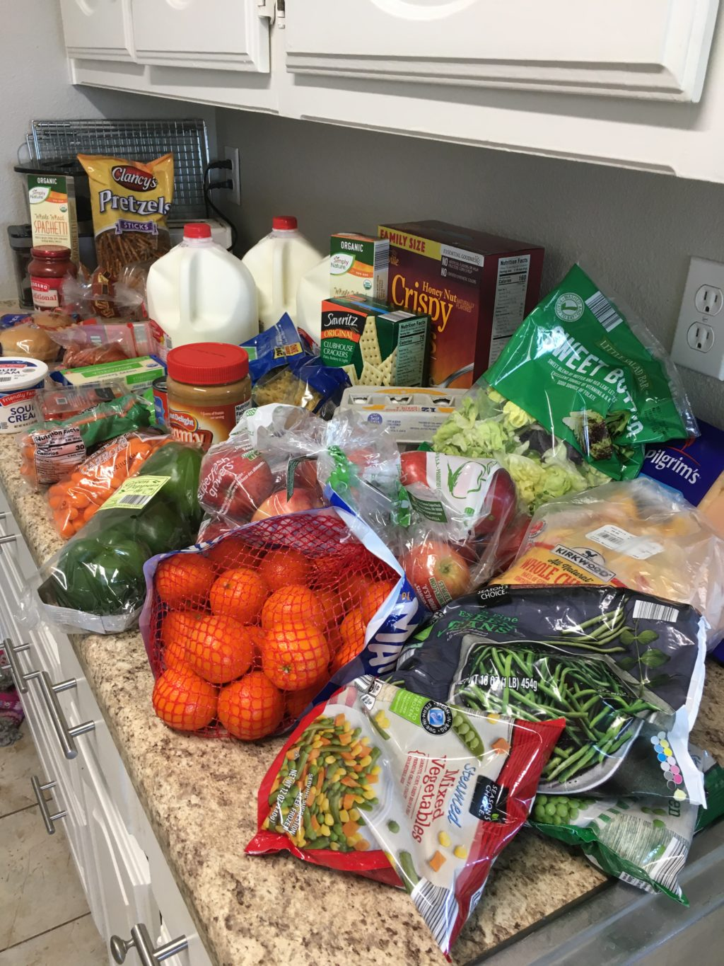 Groceries on a $100 bi-weekly budget